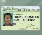 Driverlicense