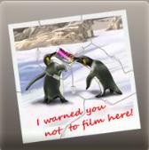 Foto de pinguinos con advertencia