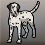 Desmond's Dalmatian