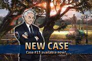New Case 13
