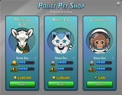 Pet Shop 11-1