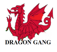 Dragon Gang