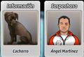 Cachorro y Ángel.png