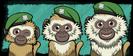 Growth 16 - Monkey
