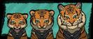 Growth 13 - Tiger