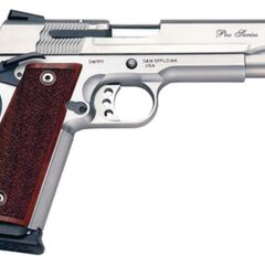 A Smith and Wesson Model.