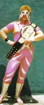Barraza wrestler