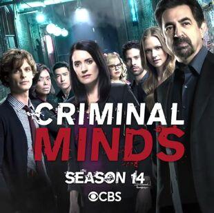 Masm Frases De La Serie Mentes Criminales 14ª Temporada