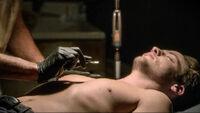 1501 Under the Skin