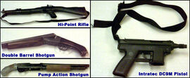 Columbine firearms
