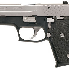Two Tone Sig Sauer P245
