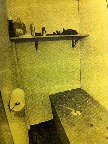 File:Wilseyville Cell.jpg
