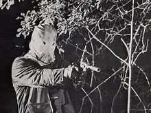 Still from the movie The Town That Dreaded Sundown, depicting a fictionalized version of the Phantom Killer