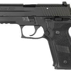 Sig Sauer P226 Beavertail variant