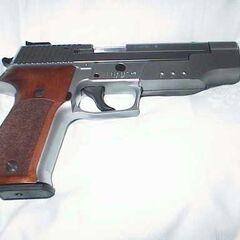 Sig Sauer P226 SL Sport II variant