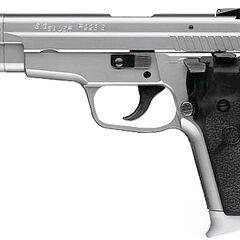 P229 Sport variant
