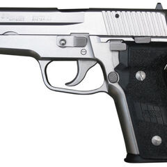 The P228 Nickel variant