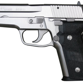 The P228 Nickel variant