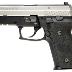 Two-tone P229R