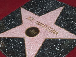 Joe Mantegna Star