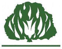 Ipb logo (detalhe)