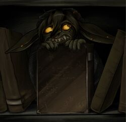 Nott hiding on the bookshelf - Kelley Akers