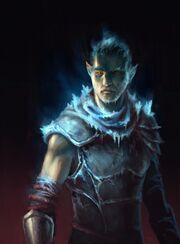 Tyrone-Andersen-Fjord-Armor-of-Agathys