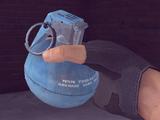 Practice Grenade