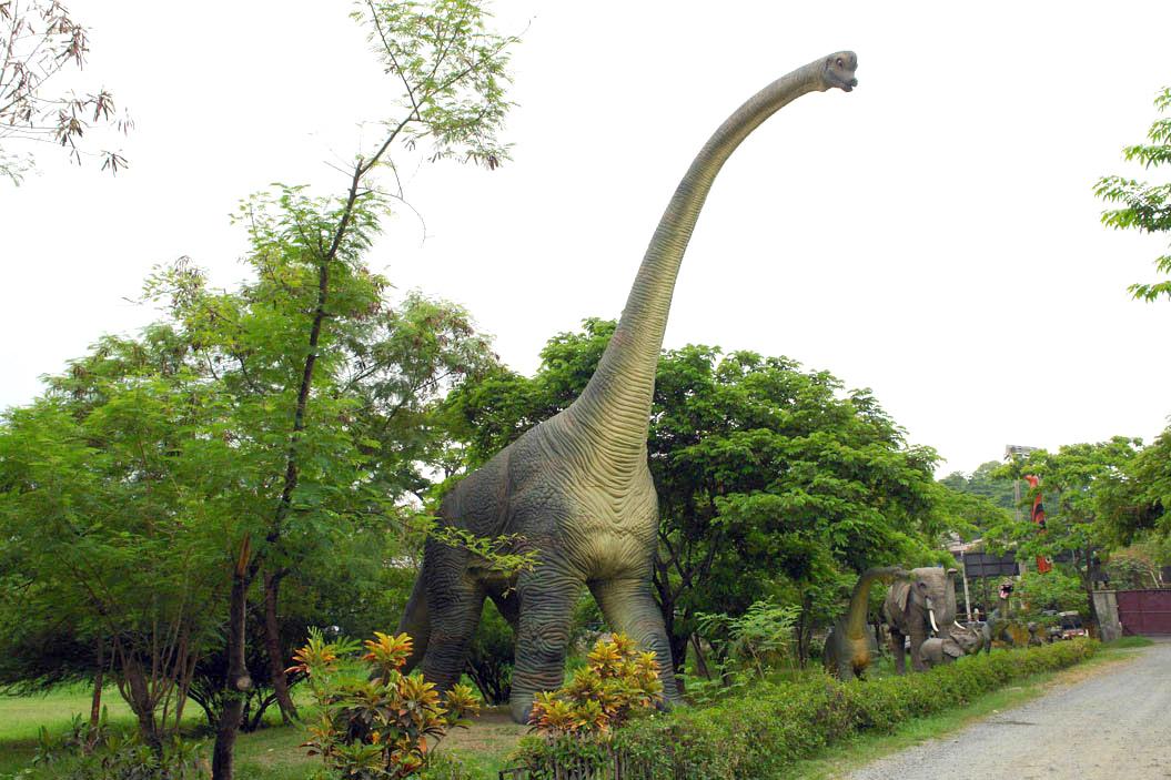 биологическая брахиозавр фото и описание рисунок свеча качественно