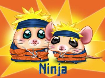 File:Cromimi wiki careers ninja.png