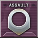 Assault Badge Class C Level 2