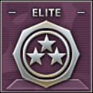 Elite Badge Class A Level 2