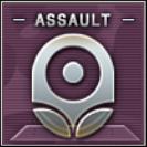 Assault Badge Class A Level 2