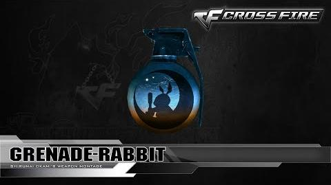 CrossFire Korea Grenade-Rabbit ☆