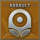 Assault Badge Class A Level 3