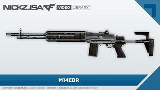 M14EBR CrossFire 2