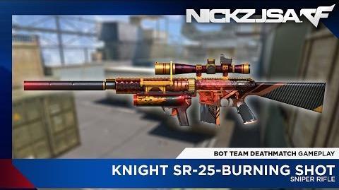Knight SR-25-Burning Shot CROSSFIRE China 2