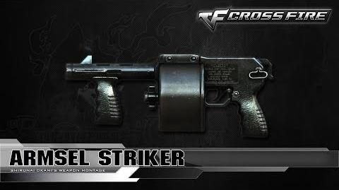 CrossFire China Armsel Striker ☆-0