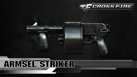 CrossFire China Armsel Striker ☆-0