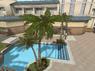 Resort Palm