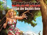 Grimm Fairy Tales Presents Wonderland: Down the Rabbit Hole Vol 1