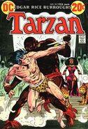 Tarzan Vol 1 217