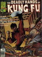 Deadly Hands of Kung Fu 26