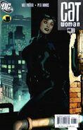 Catwoman Vol 3 48