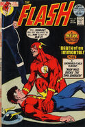 Flash Vol 1 215