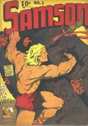 Samson Vol 1 1