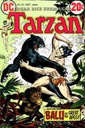 Tarzan Vol 1 213
