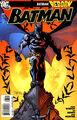 Batman Vol 1 687