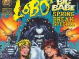 Lobo's Big Babe Spring Break Special Vol 1 1