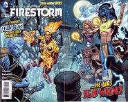 Fury of Firestorm The Nuclear Men Vol 1 19